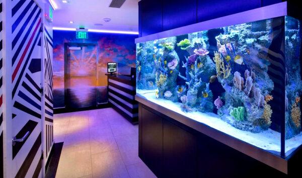 Застосування LED профілю зі світлодіодною стрічкою для підсвічування акваріума